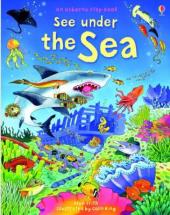 See Inside The Sea - фото обкладинки книги