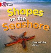 Shapes on the Seashore. Workbook - фото обкладинки книги