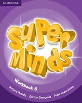 Super Minds Level 6 Workbook