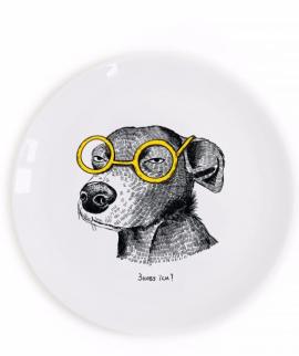 Тарілка «Собака-підозрювака» - фото книги