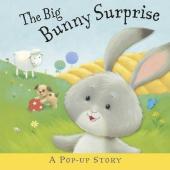 The Big Bunny Surprise - фото обкладинки книги