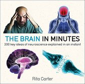 The Brain in Minutes - фото обкладинки книги