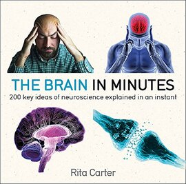 The Brain in Minutes - фото книги