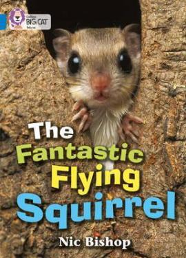 The Fantastic Flying Squirrel - фото книги