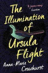 The Illumination of Ursula Flight - фото обкладинки книги