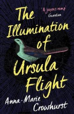 The Illumination of Ursula Flight - фото книги