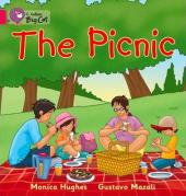 The Picnic. Workbook - фото обкладинки книги