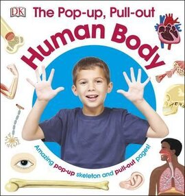 The Pop-Up, Pull-Out Human Body - фото книги