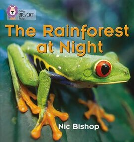 The Rainforest at Night - фото книги