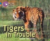 Tigers in Trouble - фото обкладинки книги