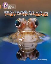 Weird Little Monsters - фото обкладинки книги