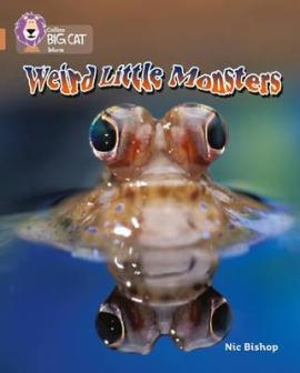 Weird Little Monsters - фото книги