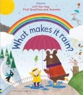 What Makes it Rain? - фото обкладинки книги
