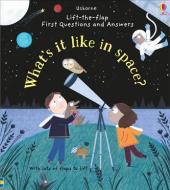 What's it Like in Space? - фото обкладинки книги