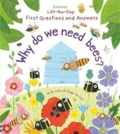 Why Do We Need Bees? - фото обкладинки книги