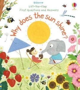 Why Does the Sun Shine? - фото книги