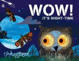 WOW! It's Night-time - фото книги